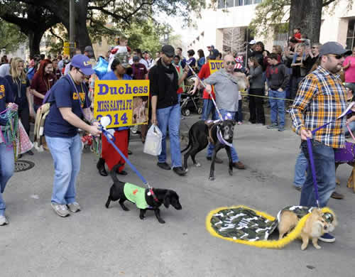 2015 Krewe of Mutts parade theme Marvelous Mutts Picture